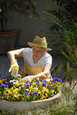 Mid adult woman gardening. — Foto de Stock