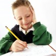 Little school kid on his desk — Stock Photo #18190821