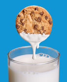 Soaking cookie on milk. — Stock Photo