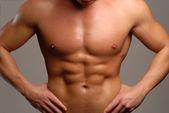 Shaped man abdominal muscle. — Stock Photo