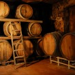Detail of a wine fermentation barrels room. — Stock Photo
