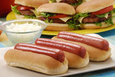 Couple Hotdogs,hamburgers and ingredients. Fast food composition. — Stock Photo