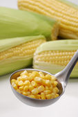 Metallic spoon with boiled fresh corn grains on it on black background. — Stock Photo