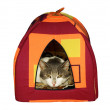 Small house for a cat — Stock Photo