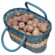 Royalty-Free Stock Photo: The sprouted potato in a basket