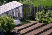 Rural kitchen garden — Stock Photo