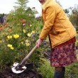 The woman digs the soil — Stock Photo
