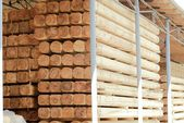 Warehousing cylindrical logs — Stockfoto