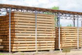 Warehousing cylindrical logs — Стоковое фото