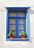 Window with flower pots — Stock Photo