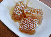 Honeycomb in platte — Stockfoto