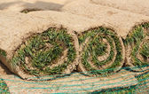 Roll grass 2 — Stock Photo