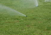 Watering  lawn of grass roll  — Stock Photo