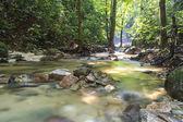 Córrego — Fotografia Stock