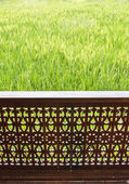 Casa no campo de arroz — Foto Stock