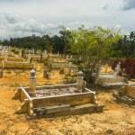 Grave — Stock Photo #29877347