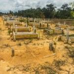 Grave — Stock Photo #29877351