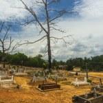 Grave — Stock Photo
