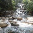 Stockvideo: Cold Stream From Mountain