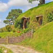 Stock Photo: Walkway at hobbiton