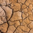 Stock Photo: Soil crack