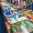 Book festival — Stock Photo #45951723