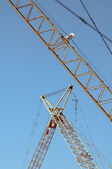 Yellow cranes and Blue Skies — Stock Photo