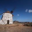 Old windmill in Villaverde, Fuerteventura, Canary Islands — Stock Photo