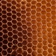 Photo: Honeycomb background