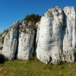 Panorama of limestone rock, Polish Jurassic Highland. — Stock Photo #30289199