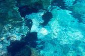 Su kayalık arka plan, atlantik okyanusu. — Stok fotoğraf