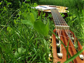 Photo guitar  on the grass — Stock Photo