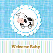 Cute cow baby boy arrival card — Stock Photo