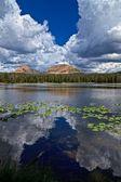 Between Reids Peak and Bald mountain — Stock Photo
