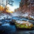 Autumn giving Way to Winter — Stock Photo