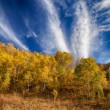 Stock Photo: Clouds Streaks Across Autumn Sky