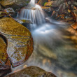 Waterfall and Wet Rocks — Stock Photo #14041236