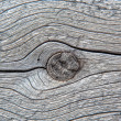Wood Knot — Stock Photo
