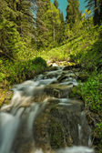 Green Colors and a Stream — Stock Photo