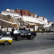 Foto de Stock  : PotalPalace,Lhasa, Tibet, China