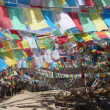 Stock Photo: Prayer flag(Tibetan Darchor),Shangrila, Yunnan, China