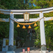 Japanese torii gate of Hodosan shrine,Chichibu Nagatoro, Saitama, Japan — Stock Photo