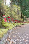 "Jizo statue in Kanmangafuchi,Nikko,Japan,This particular group of Jizo statues is called ""Bake Jizo""(Ghost Jizo). — Stock Photo"