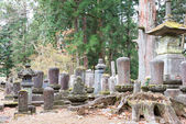 Old cemetery in Kanmangafuchi, Nikko, Japan — Stock Photo
