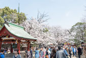 TOKYO, JAPAN - APRIL 1 2014: Ueno Toshogu Shrine on April 1, 2014 in Ueno Park. Ueno Park is visited by up to 2 million people for annual Sakura Festival. — Stock Photo
