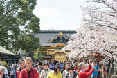 TOKYO, JAPAN - APRIL 1 2014: Ueno Toshogu Shrine on April 1, 2014 in Ueno Park. Ueno Park is visited by up to 2 million people for annual Sakura Festival. — Stockfoto