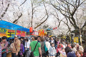 TOKYO, JAPAN - APRIL 1 2014: Visitors enjoy cherry blossom on April 1, 2014 in Ueno Park. Ueno Park is visited by up to 2 million people for annual Sakura Festival. — Stock Photo