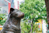 TOKYO, JAPAN - May 1 2014: Hachiko statue. Hachiko (November 10, 1923 - March 8, 1935) was remembered for his remarkable loyalty to his owner which continued for many years after his owner's death. — Stock Photo