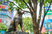 TOKYO, JAPAN - APRIL 17 2014: Hachiko statue. Hachiko (November 10, 1923 - March 8, 1935) was remembered for his remarkable loyalty to his owner which continued for many years after his owner's death. — Stock Photo