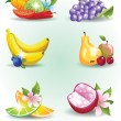Stock Vector: Collection of fruits